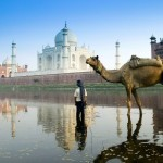 Amazing India 37